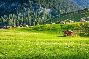 Case di legno a Steg, Malbun, nel Liechtenstein, in Europa foto