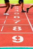 corsie della pista di atletica