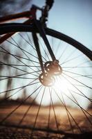 ruota di bicicletta sullo sfondo soleggiato foto