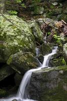 Crabtree Falls foto