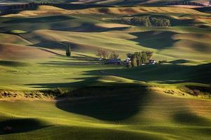 Washington Palouse. foto