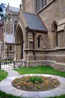 giardino pubblico di Boston foto