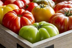 assortimento di pomodori freschi cimelio foto