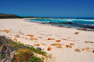 spiaggia selvaggia foto