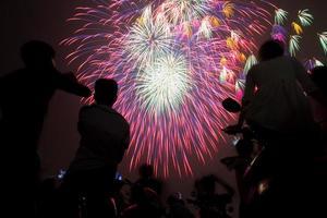 fiore di fuochi d'artificio