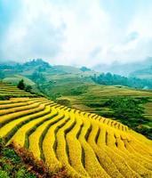 campi di riso terrazzati di mu cang chai, yenbai, vietnam. foto