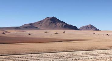 deserto del Salvador Dali foto