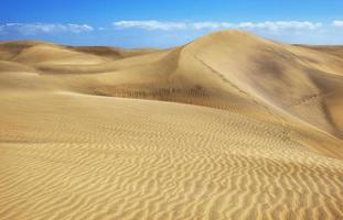 dune foto