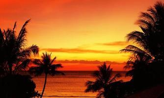 tramonto tropicale