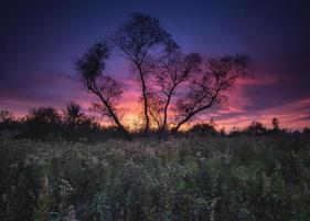 ojibway sunset foto