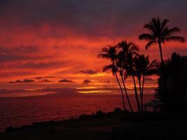 tramonto rosa maui foto