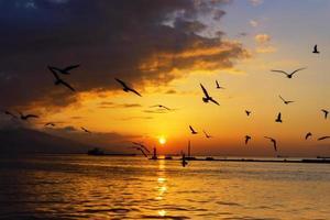 tramonto a izmir foto
