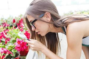 giovane giardiniere femmina controlla la salute dei fiori foto