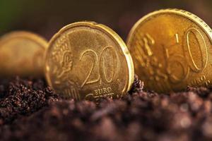 crescita del denaro. foto