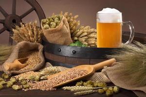 ingredienti della birra foto