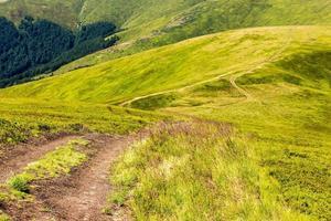 sentiero sulla collina