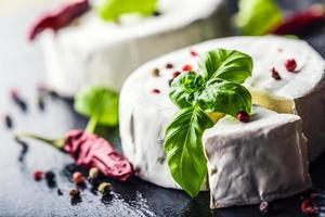 formaggio brie. formaggio camembert. brie fresco e una fetta. foto