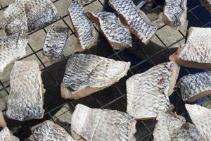 pesce fresco foto