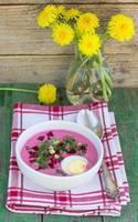 zuppa di barbabietole. holodnik
