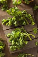 broccoli verdi crudi verdi grezzi rabe rapini foto