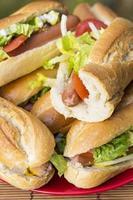 pranzo all'aperto: primi piani di sandwitch fatti in casa foto