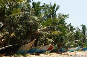 barche della Sri Lanka foto