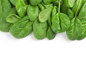 spinaci freschi di foglie verdi