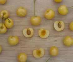 primo piano delle ciliege gialle sulla plancia di legno. foto