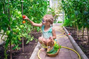 bambina che raccoglie i cetrioli e i pomodori del raccolto in serra foto