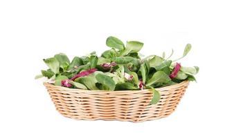 spinaci e radicchio rosso si mescolano sul cestino di vimini. foto