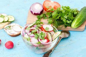 insalata di primavera con ravanelli, cetrioli, cavoli e cipolla close-up