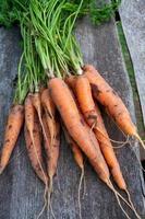 carote fresche sul tavolo di legno