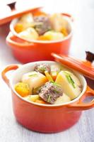 spezzatino di manzo con patate e carote