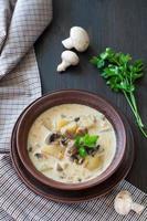 ciotola di zuppa di funghi vegetariana foto