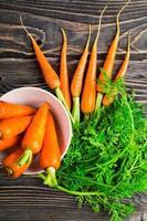 carota fresca biologica