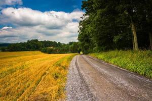 campo agricolo e strada sterrata nella contea di Carroll rurale, Maryland. foto
