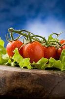 pomodori su lattuga foto