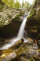 cascate inferiori al parco statale di patapsco nella contea di baltimore foto
