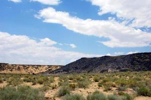 petroglifi del canyon di Boca Negra foto