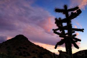paesaggio al tramonto foto