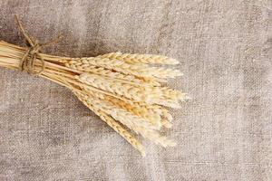 spighe di grano sul primo piano della tela da imballaggio foto
