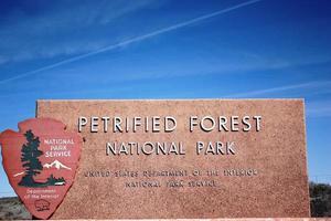 Parco nazionale della foresta pietrificata in Arizona, route 66 usa foto