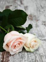 rose su un tavolo di legno foto
