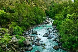 fiume da trekking sempreverde foto
