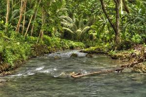 cascate del fiume Kawasan