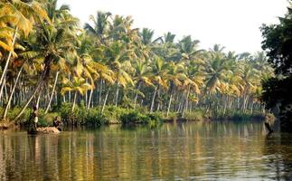 fiume Poovar