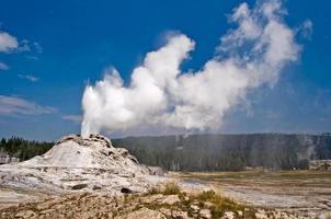 geyser del castello, parco nazionale di yellowstone, stati uniti d'america