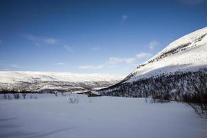 paesaggio invernale innevato foto