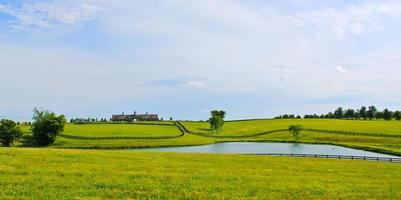 paesaggio di allevamento di cavalli foto