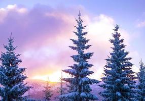bellissimo paesaggio invernale